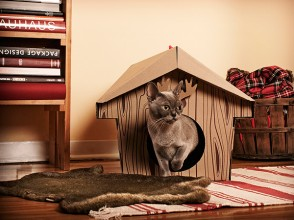 The_Canadian_Cabin_cat_house_1_Loyal_Luxe_T